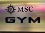 MSC MERAVIGLIA - MSC Gym